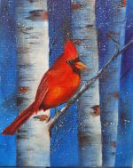 Cardinal And Birches