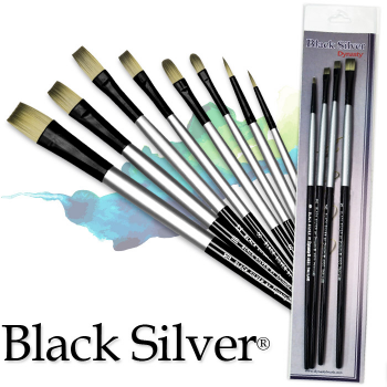 Black Silver Brush Sets